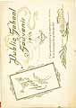 Thumbnail image of Nauvoo Public School 1915 Souvenir cover